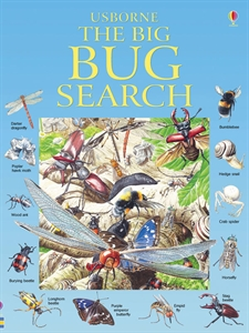 The Big Bug Search Book