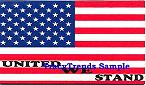 United We Stand - American Flag Magnet