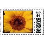 multiple sunflower postage stamp