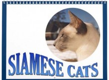 cat_calendar