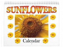 sunflower-flower-calendar-photography-tracy-foote